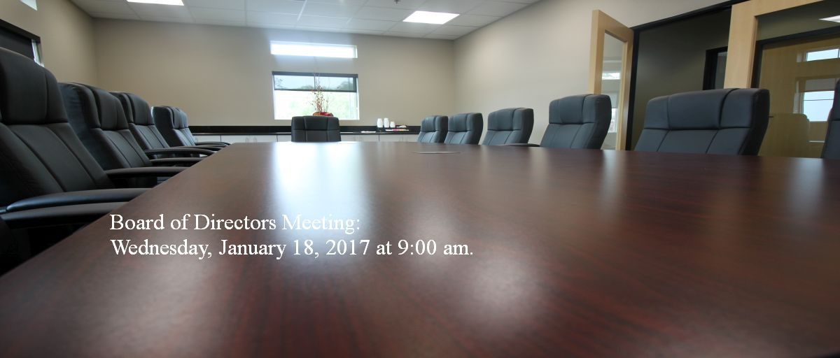 Permalink to: January Board of Directors