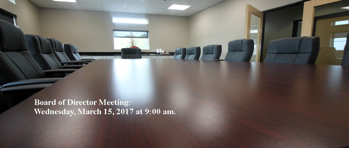 Permalink to: March Board of Directors Meeting